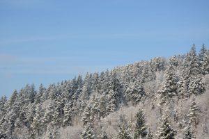 Winterliche Aussicht