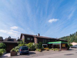 Ansicht Aparthotel Hochwald Bergseite