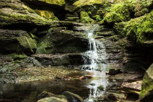 Wasserfälle im Monbachtal